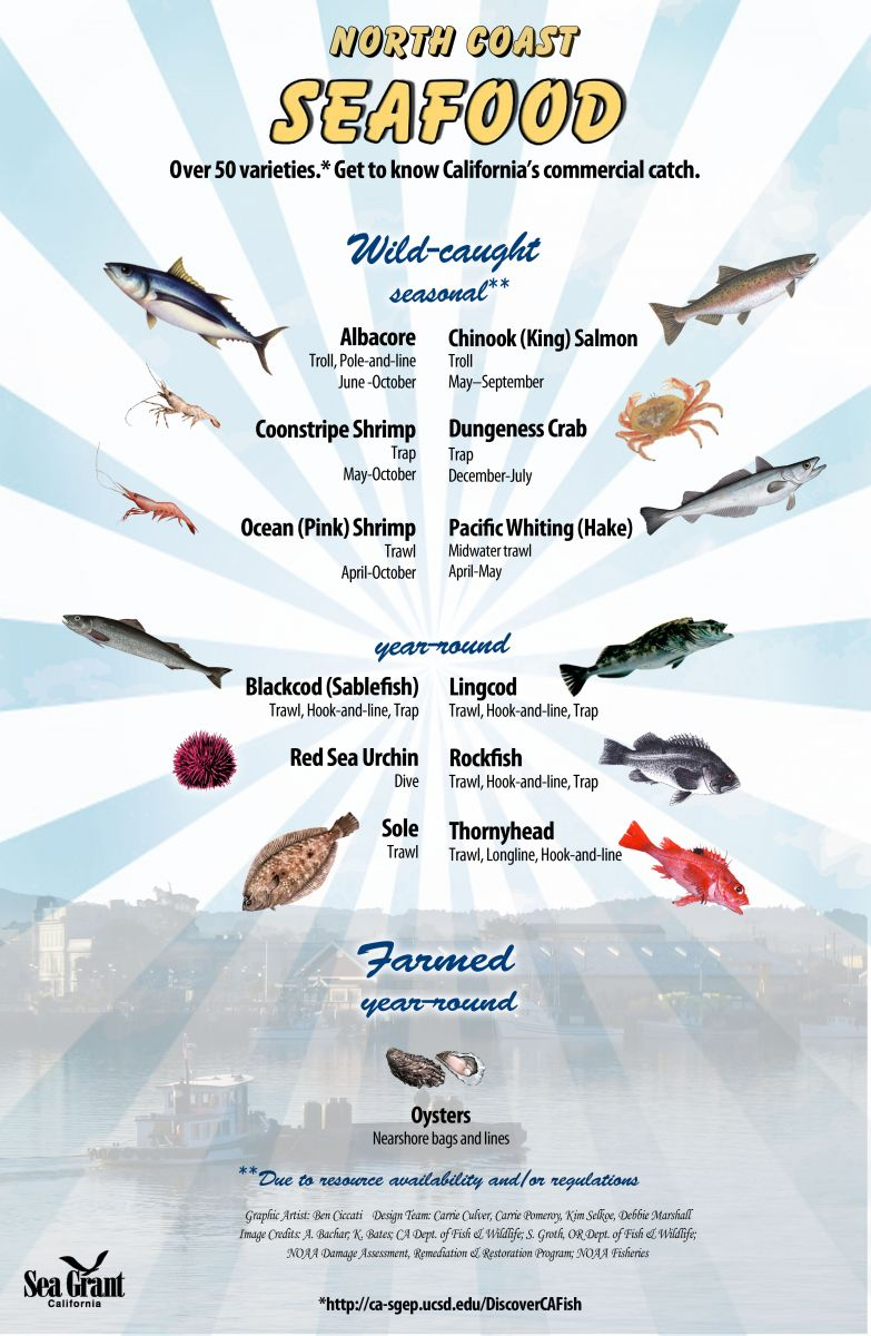 SeafoodPosterNorth_11x17_6_2013