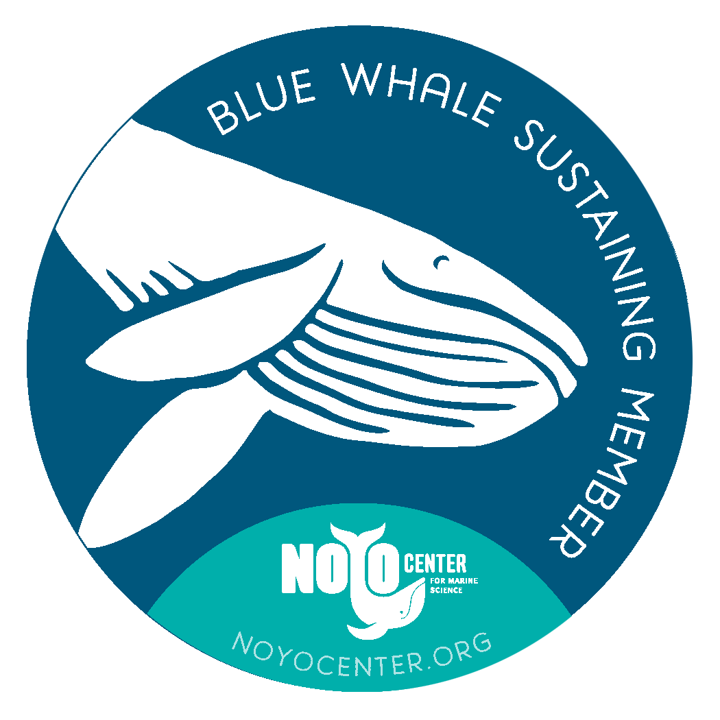 Blue Whale Sustaining Membership