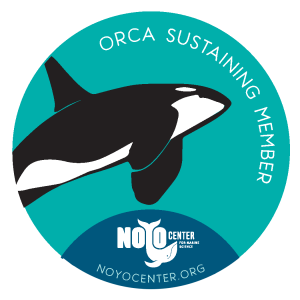 Orca Decal