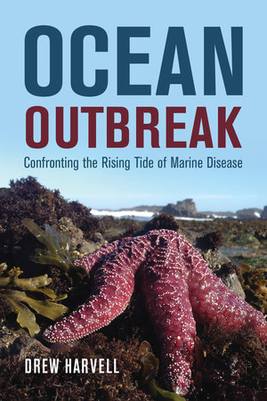 Ocean Outbreak Sea Star Book